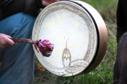 shamaniccoaching